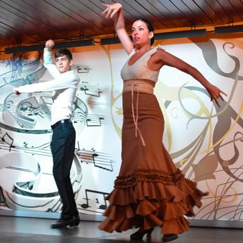 Escuela Flamenco